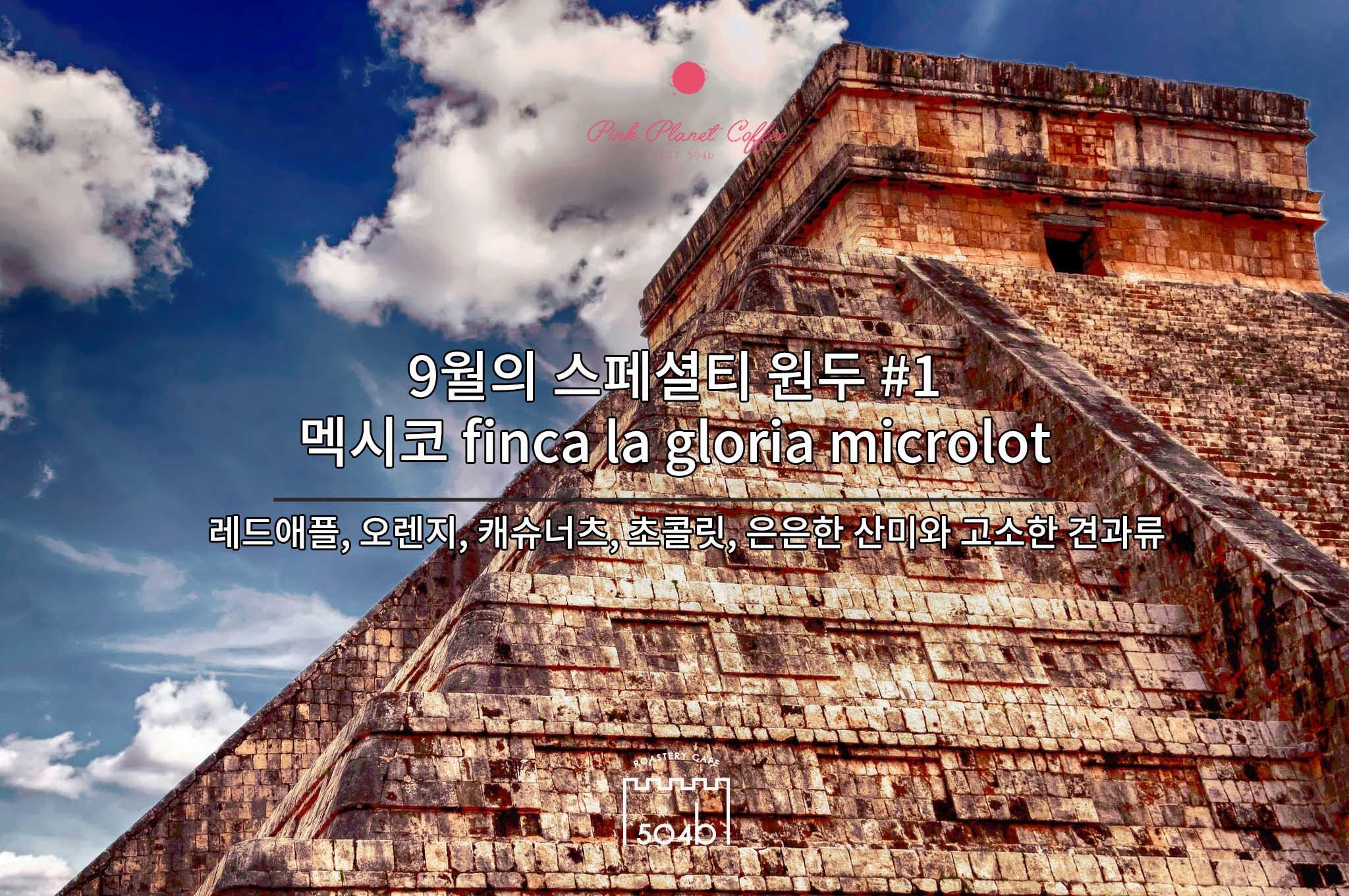 [9월의원두] 멕시코 핀카 라 글로리아 마이크로랏